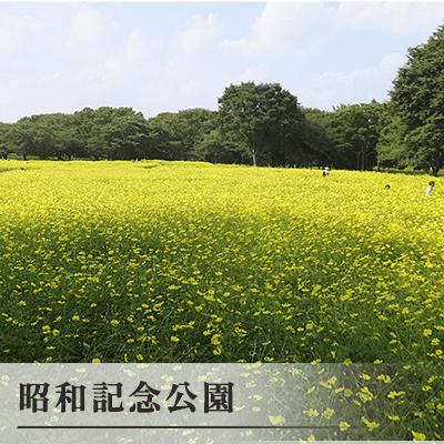 東京都/立川・吉祥寺/昭和記念公園の婚活パーティー