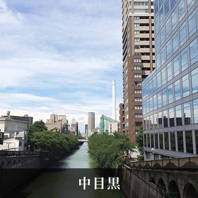 東京都/恵比寿/目黒川の婚活パーティー