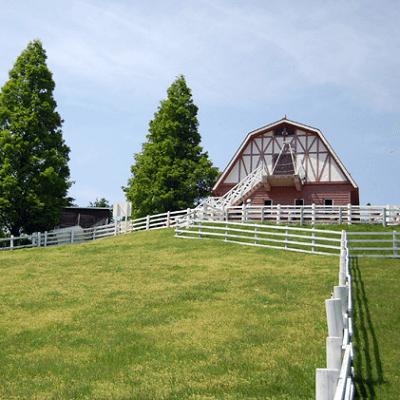 兵庫県/神戸/神戸市立六甲山牧場の婚活パーティー