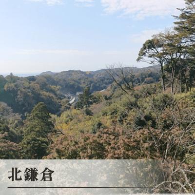 神奈川県/鎌倉/「北鎌倉」駅 東口改札の婚活パーティー