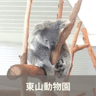 愛知県/東山動物園/東山動物園の婚活パーティー