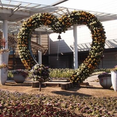 大阪府/その他大阪府/大阪市立長居植物園 正門前の婚活パーティー