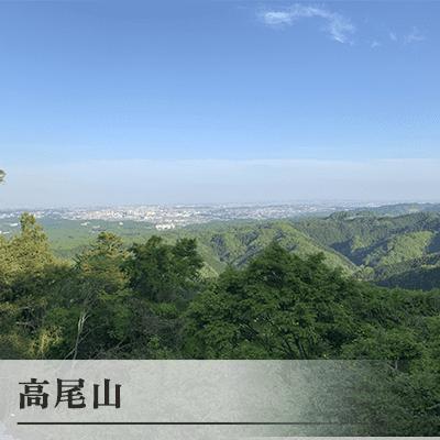 東京都/八王子/高尾山の婚活パーティー