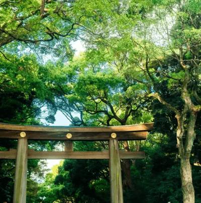 東京都/渋谷・表参道/原宿駅 表参道口の婚活パーティー