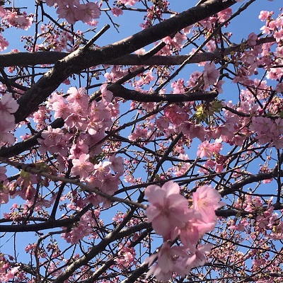 恋の季節がはじまる!春の足音と素敵な出会い♪