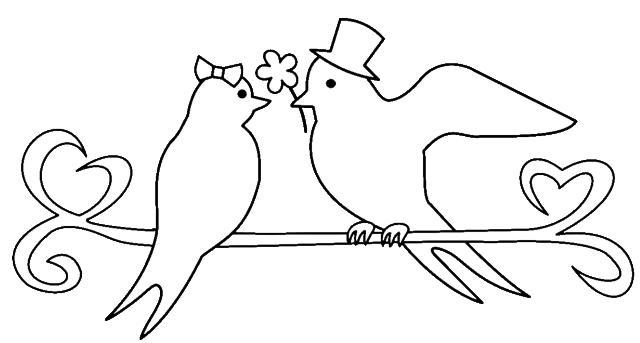 鳥カップル