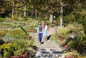 ハーブ園四季の庭のイメージ