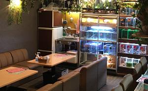 爬虫類カフェ