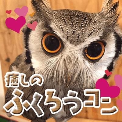 動物たちが恋のキューピッド♡《大須お散歩&動物ふれあいコン》優しい方限定
