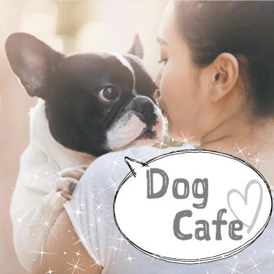 《恋する♡癒しの犬カフェコン》同年代でお話好きの明るい性格の男女♡