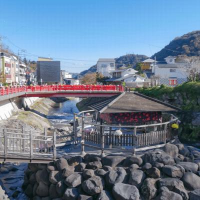 【GOTOトラベル対象】西伊豆・堂ヶ島クルーズと修善寺♪貸切バスツアー