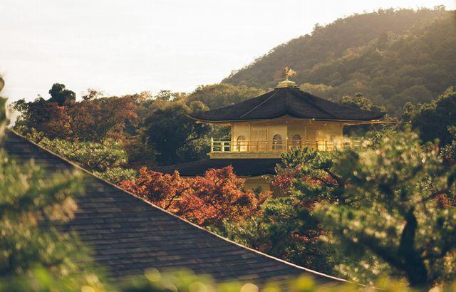 京都で良縁開運!地元の人もオススメの「縁結びパワースポット」