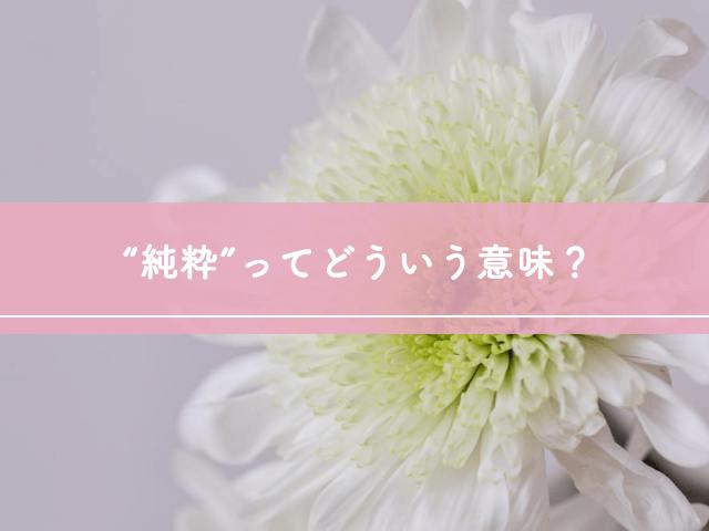 """""""純粋""""ってどういう意味?"""